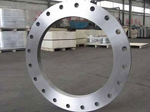 SS 304H Plate flanges